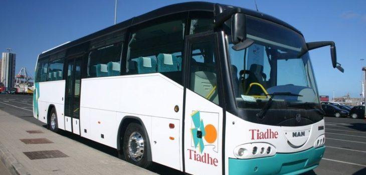 bus-taxis-fuerteventura